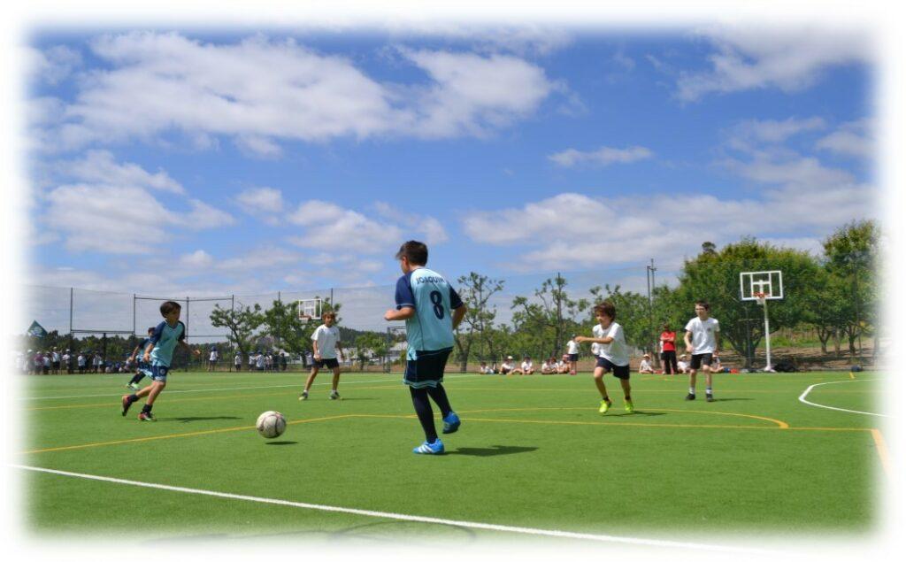 futebol fmns